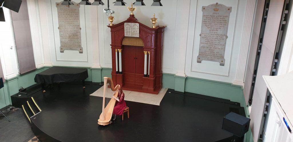 Inge van Grinsven - harp - Willem II Den Bosch 2